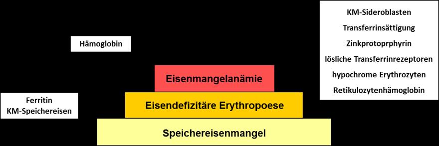 Sensitivität der verschiedenen Eisenparameter