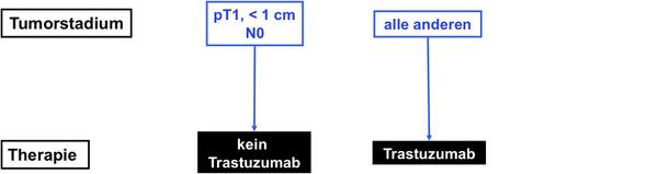 Algorithmus für die adjuvante anti - HER2 Therapie
