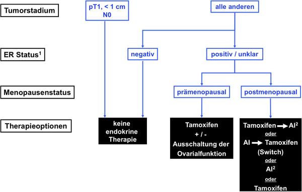 mammakarzinom-brustkrebs-der-frau-2