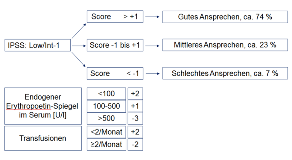 Modifizierter Score der Nordic MDS-Group