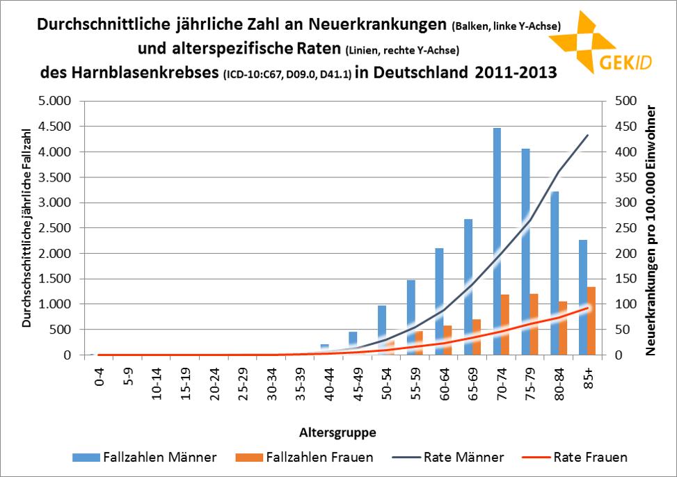 Altersspezifische Erkrankungszahlen (Balken, linke Y-Achse) und altersspezifische Erkrankungsraten (Linien, rechte Y-Achse) des Harnblasenkrebses in Deutschland