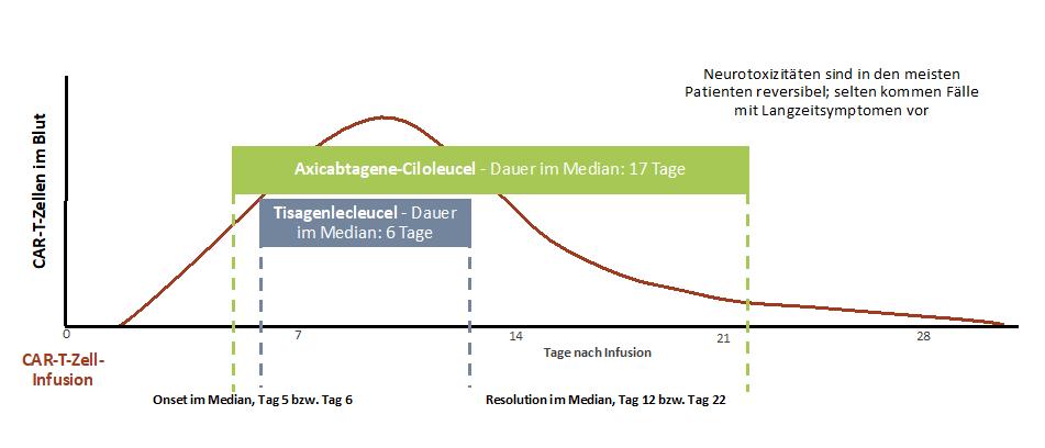 Zeitlicher Verlauf des ICANS 14